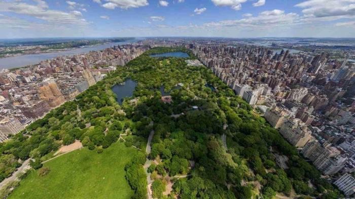 centeral_park_NY