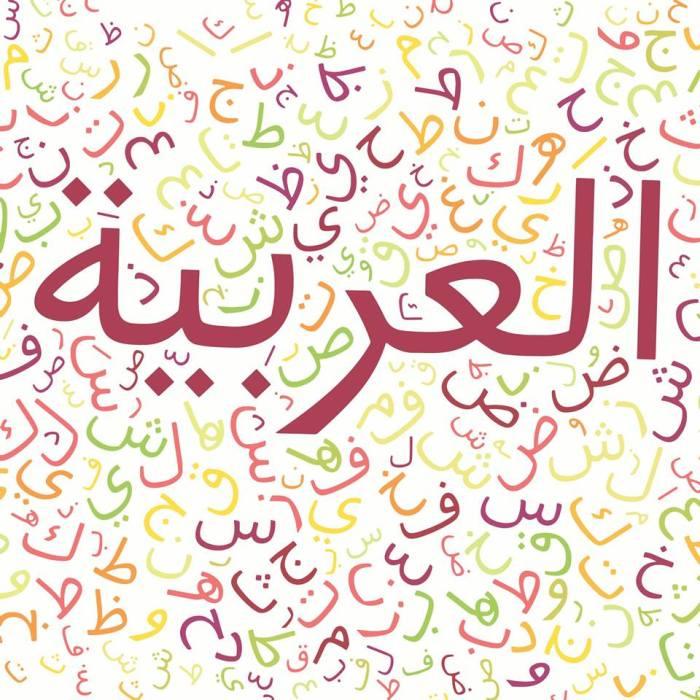 ahmed_sallam_9_arabic_language_in_digital_world