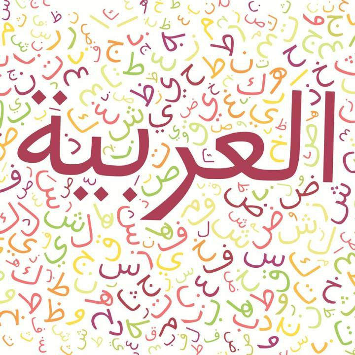ahmed_sallam_9_arabic_language_in_digital_world